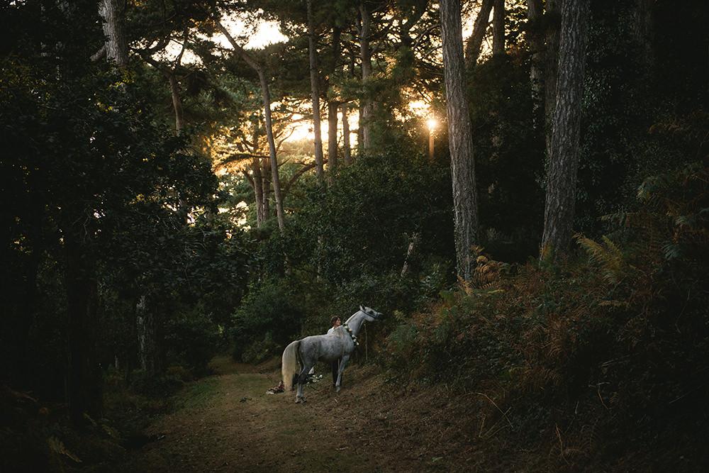 elopement bohène avec cheval / zéphyr et luna
