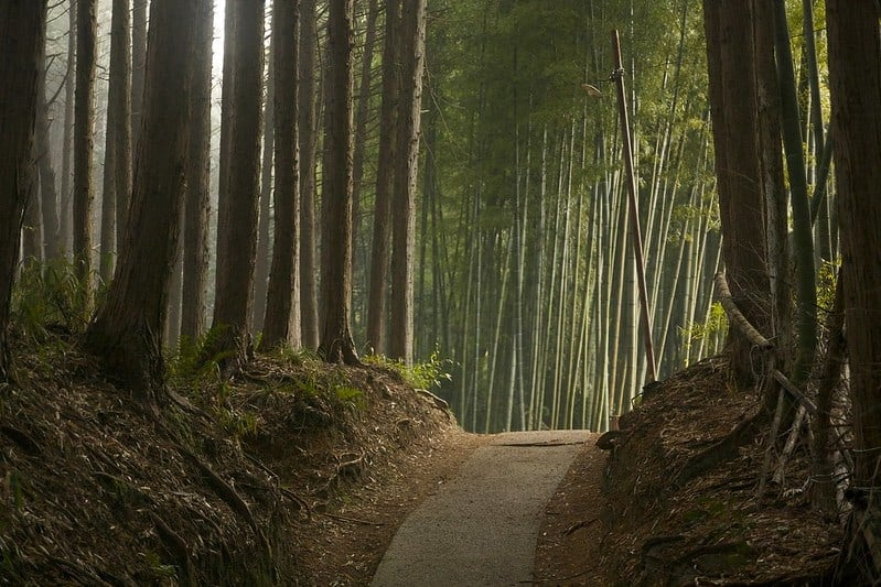 the best and most beautiful places to elope in the world - japan
