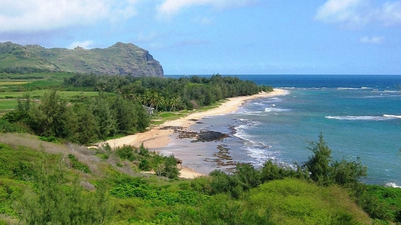 élopement sur la plage de mahaulepu à Hawaii