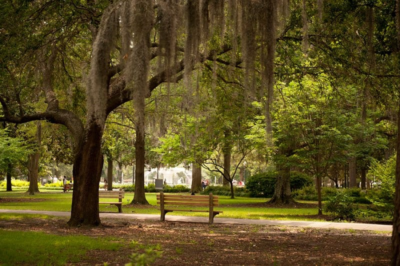 best places to elope in the us - savannah