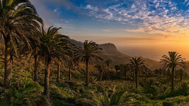 elope in europe guide - canary islands
