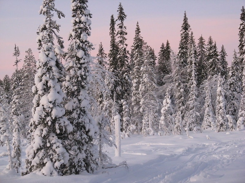 elope in europe guide - lapland