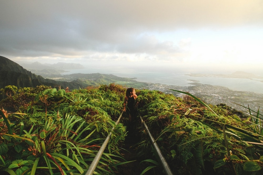 Hawaii Elopement Destination Jungle