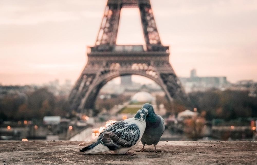 elopement packages in paris, france