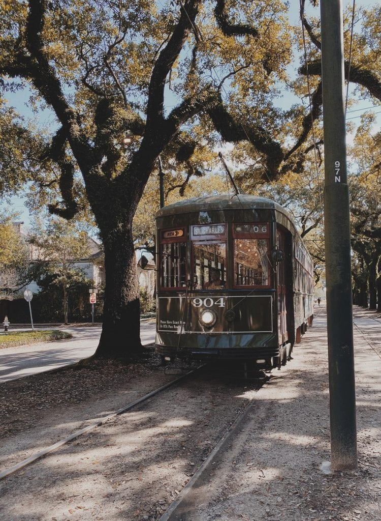 Fall in New Orleans