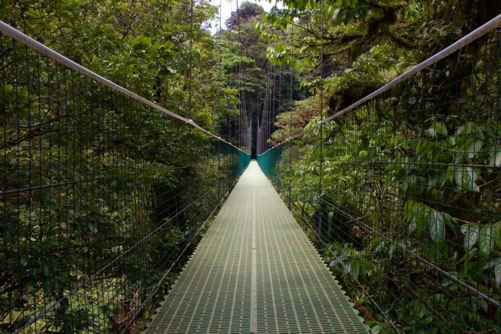 Monteverde adventure elopement in costa rica