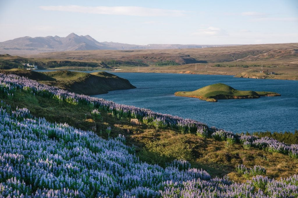 When to elope in Iceland - summer