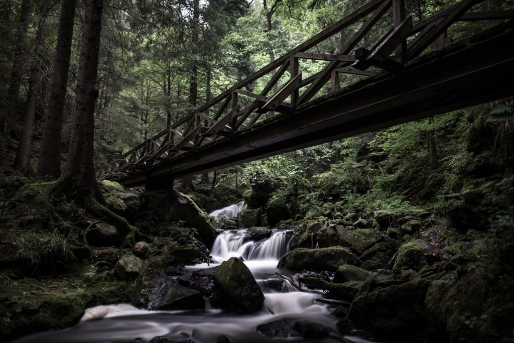 Where to elope in Germany - Black forest