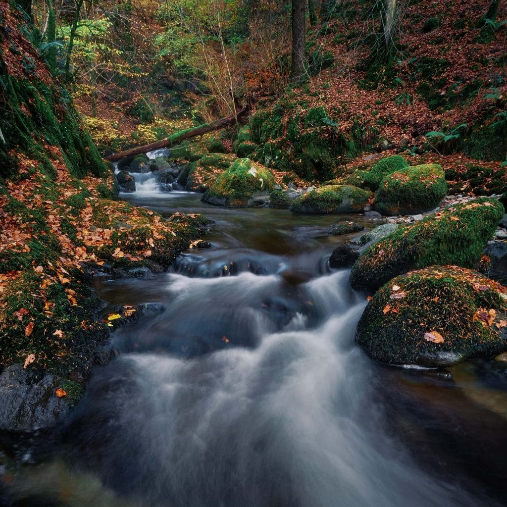 When to elope in the UK - Fall