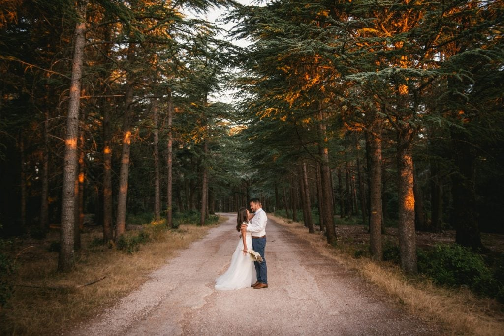 A post-wedding session in Provence - cedar forest lane
