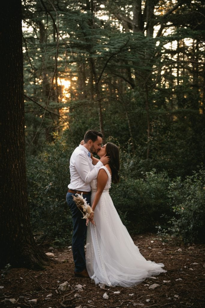 A post-wedding session in Provence - cedar forest
