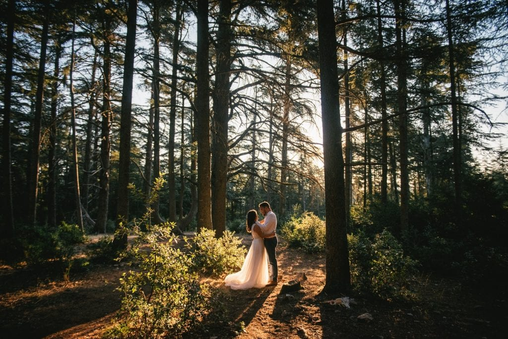 A post-wedding session in Provence - cedar forest sunrise