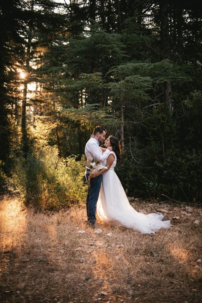 A post-wedding session in Provence - cedar forest sun