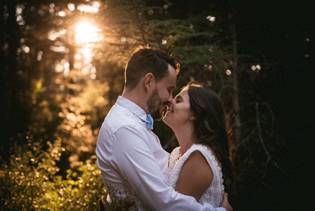 A post-wedding session in Provence - cedar forest kiss
