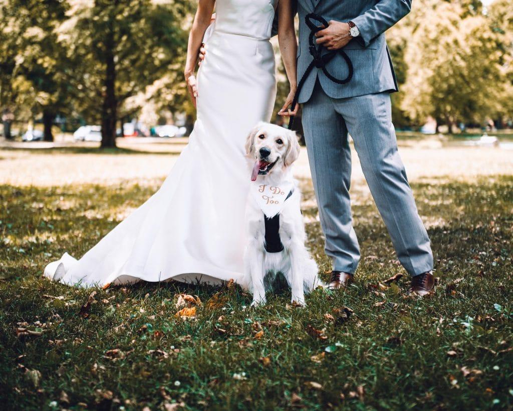 Dog friendly elopement location