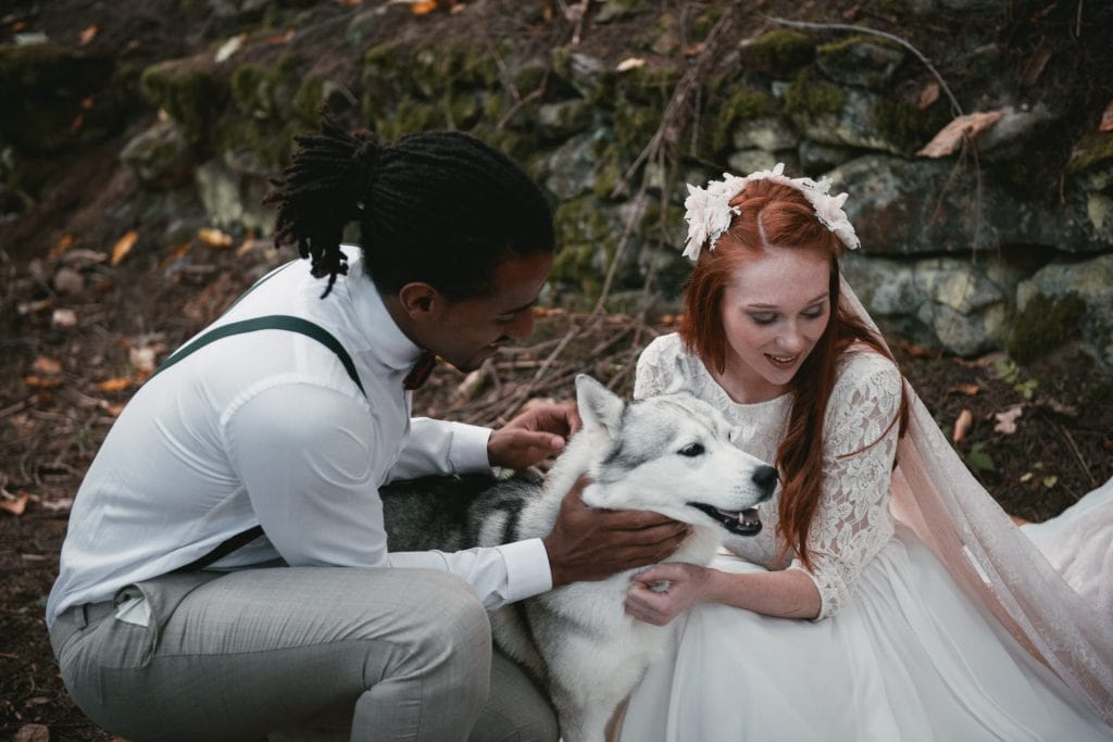 The ultimate guide to take your dog with you on your elopement